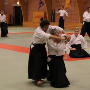 35th International Nishio Aikido seminar