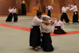 35th International Nishio Aikido seminar